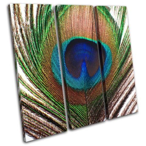 Peacock Feather Animals - 13-0802(00B)-TR11-LO
